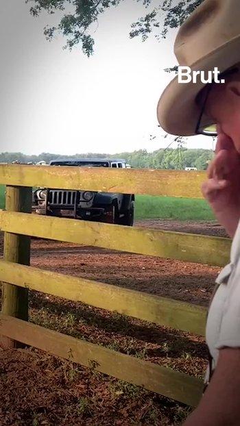 Este granjero lucha contra el cambio climático gracias a sus vacas