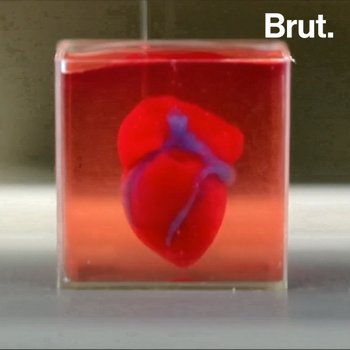 Scientists Create 3D Printed Heart