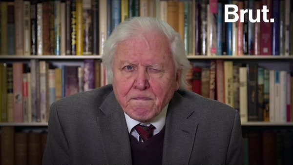 Sir David Attenborough urges global leaders to tackle climate change